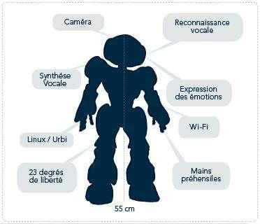 Crédit : Aldebaran Robotics