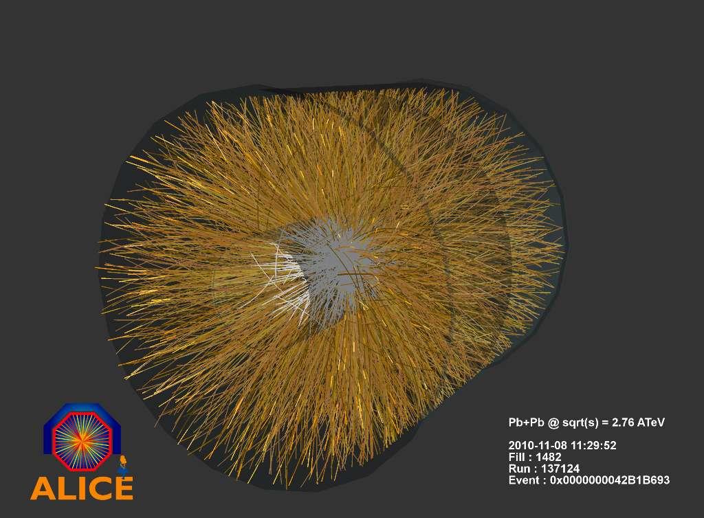 Les trajectoires des particules produites par les collisions d'ions de plomb dans le détecteur Alice le 8 novembre 2010. © CERN/ALICE Collaboration