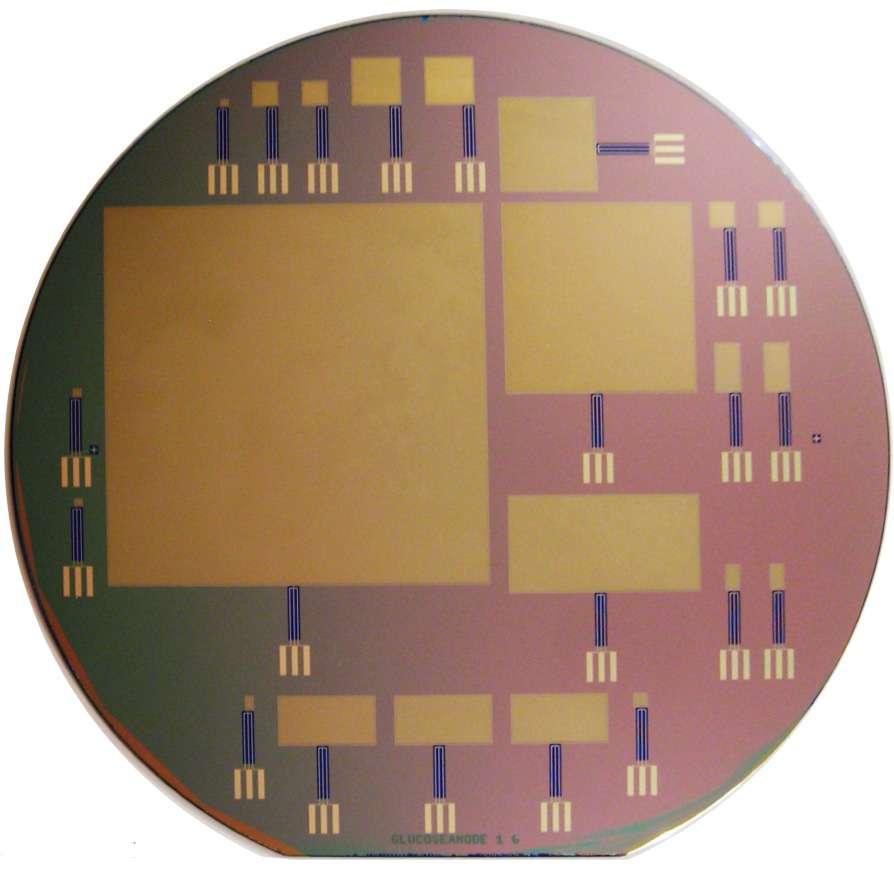 Plusieurs piles à combustibles du MIT sont présentées sur cette image. La plus grande fait 6 cm environ. © Sarpeshkar Lab