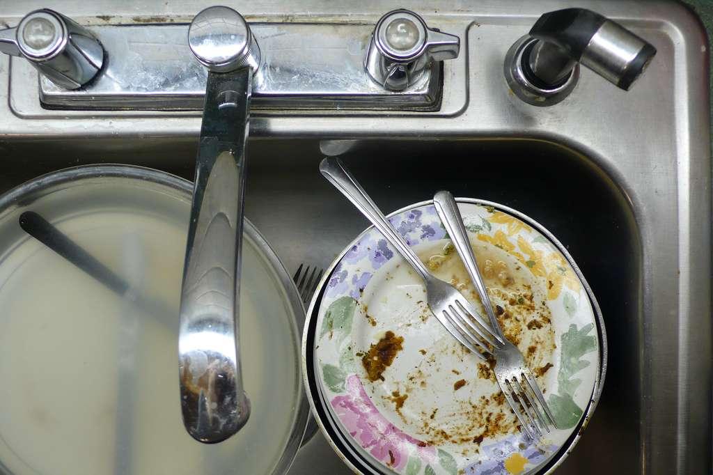 Installer un broyeur de cuisine permet de réduire les déchets alimentaires afin que ceux-ci puissent passer par l'évacuation des eaux usées. © Rachel Zack, Flickr, CC BY-SA 2.0