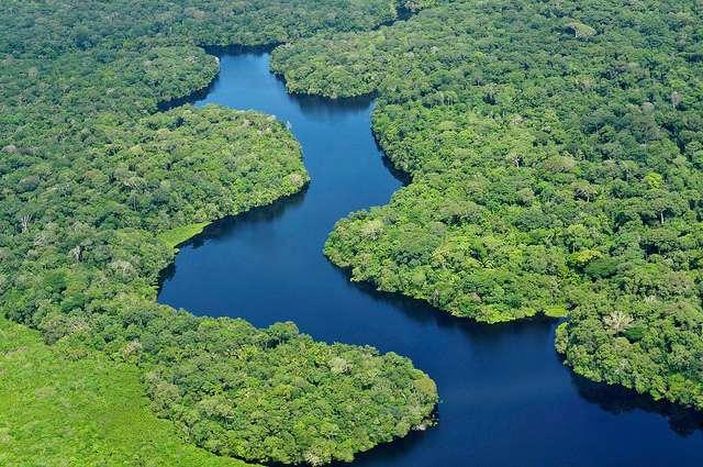 La forêt amazonienne, qui recouvre une surface de 5,5 millions de km2, se partage entre neuf pays : la Bolivie, le Brésil, la Colombie, l'Équateur, la France (avec la Guyane), le Guyana, le Pérou, le Surinam et le Venezuela. Même si un modèle climatique affirme le contraire, elle devrait mieux supporter le réchauffement climatique qu'on le pensait. © Cifor, Flickr, cc by nc nd 2.0