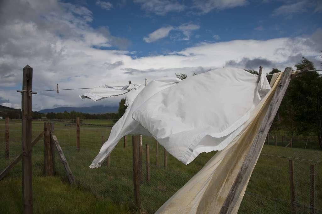 Blanchir le linge est possible avec des méthodes naturelles. © Paul Hermans, Wikimedia Commons, cc by sa 2.0