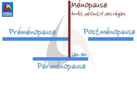 Ce schéma explique l'ordre d'apparition des différentes phases à l'approche de la ménopause. La préménopause englobe les dernières années de la fécondité de la femme, et se termine à l'arrêt définitif des règles. © Carole Froumenty, Futura-Sciences