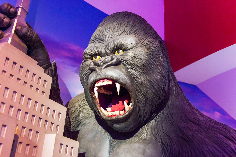 Les fossiles du gigantopithèque ont notamment alimenté le mythe de King Kong, qui a fait tant de mal à l'image du gorille, un herbivore pacifique. © Anton_Ivanov, Shutterstock.com