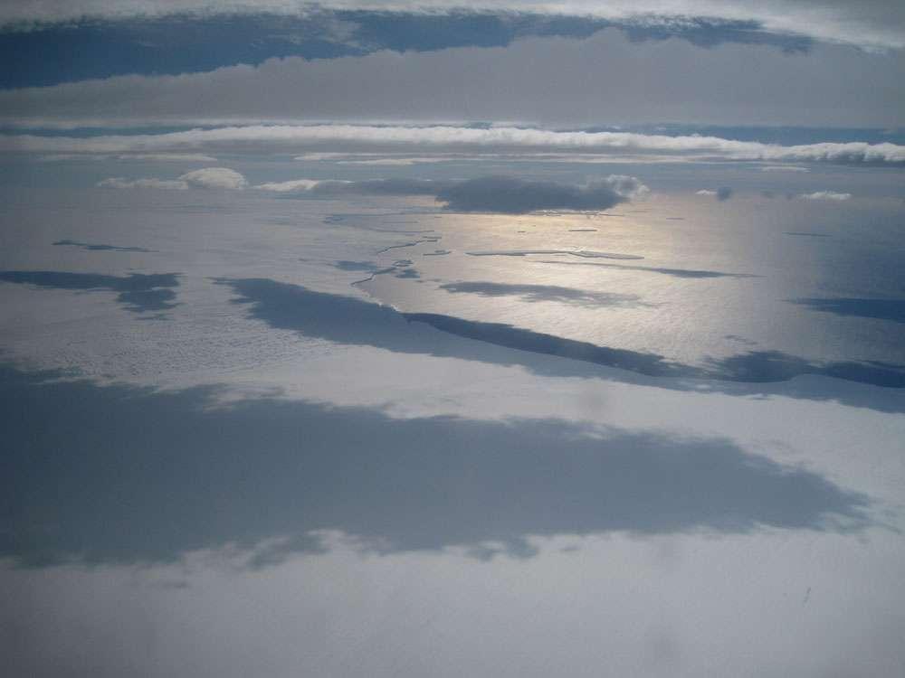 L'extrémité du glacier Ferrigno, là où il s'étale sur les eaux de la baie d'Eltanin, dans la mer de Bellingshausen. © Rob Bingham
