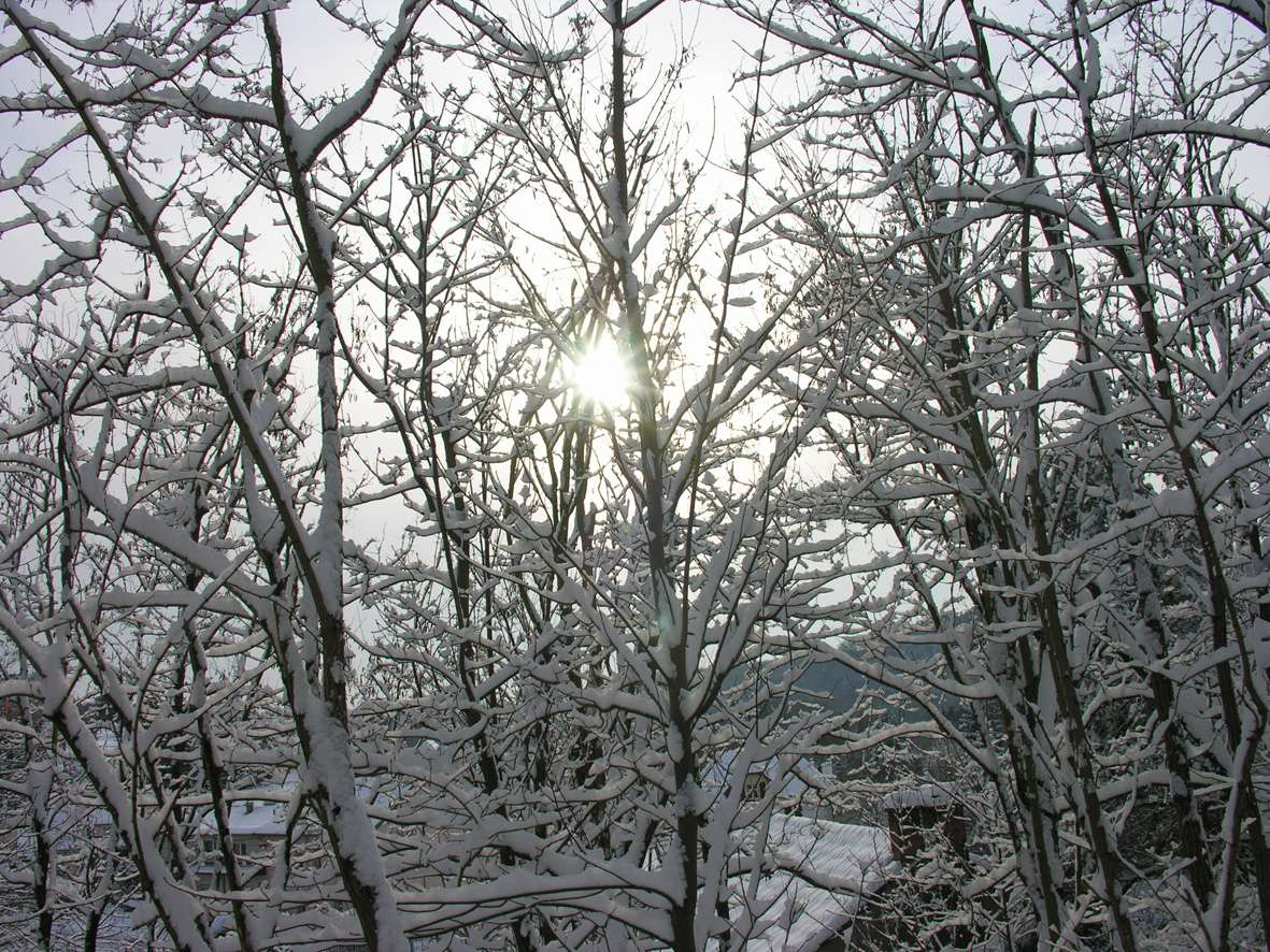 Un grand froid est susceptible de provoquer une sensation de brûlure. © Nathalie Mayer