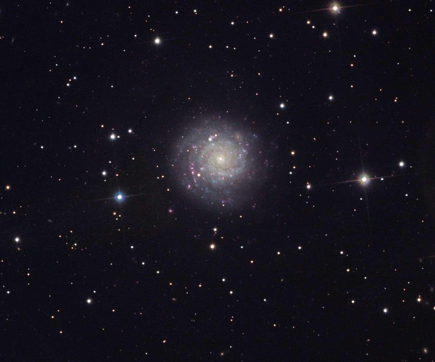 La galaxie NGC 1058, dans la constellation de Persée, abrite SN 1961V. © Bob Ferguson et Richard Desruisseau/Adam Block/NOAO/AURA/NSF