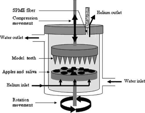 L'appareil qui mâche les pommes comme les hommes... © 2008 American Chemical Society