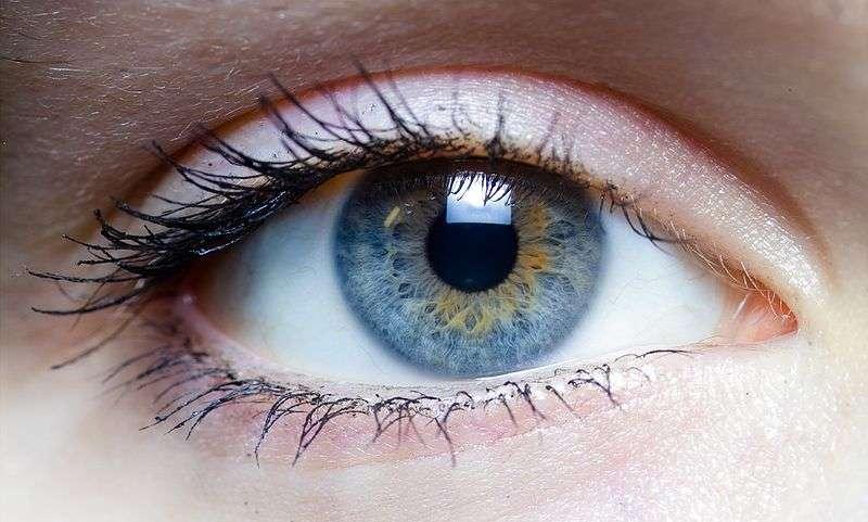 Une image vue par peu de photorécepteurs peut être mal analysée par le cerveau. © Laitr Keiows, Wikimedia, CC by-sa 3.0