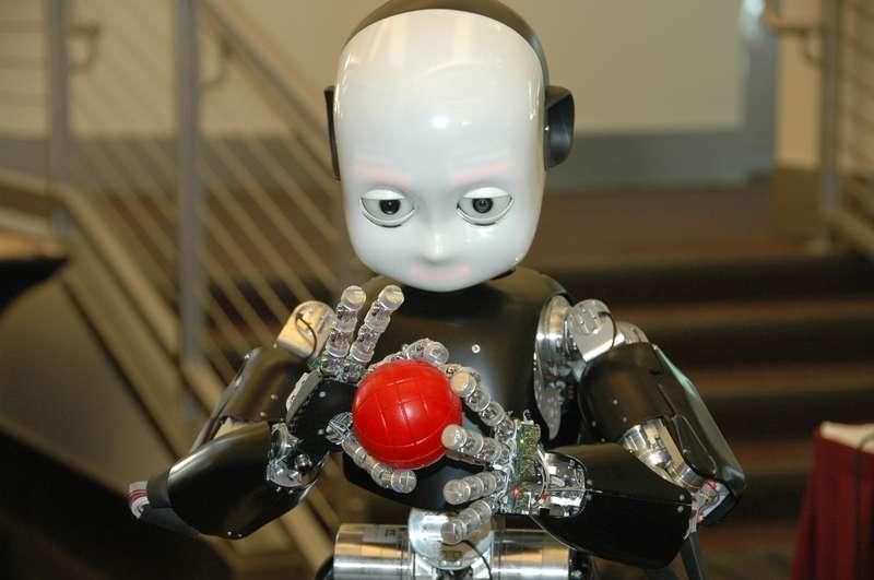 iCub, le robot humanoïde. © RobotCub project