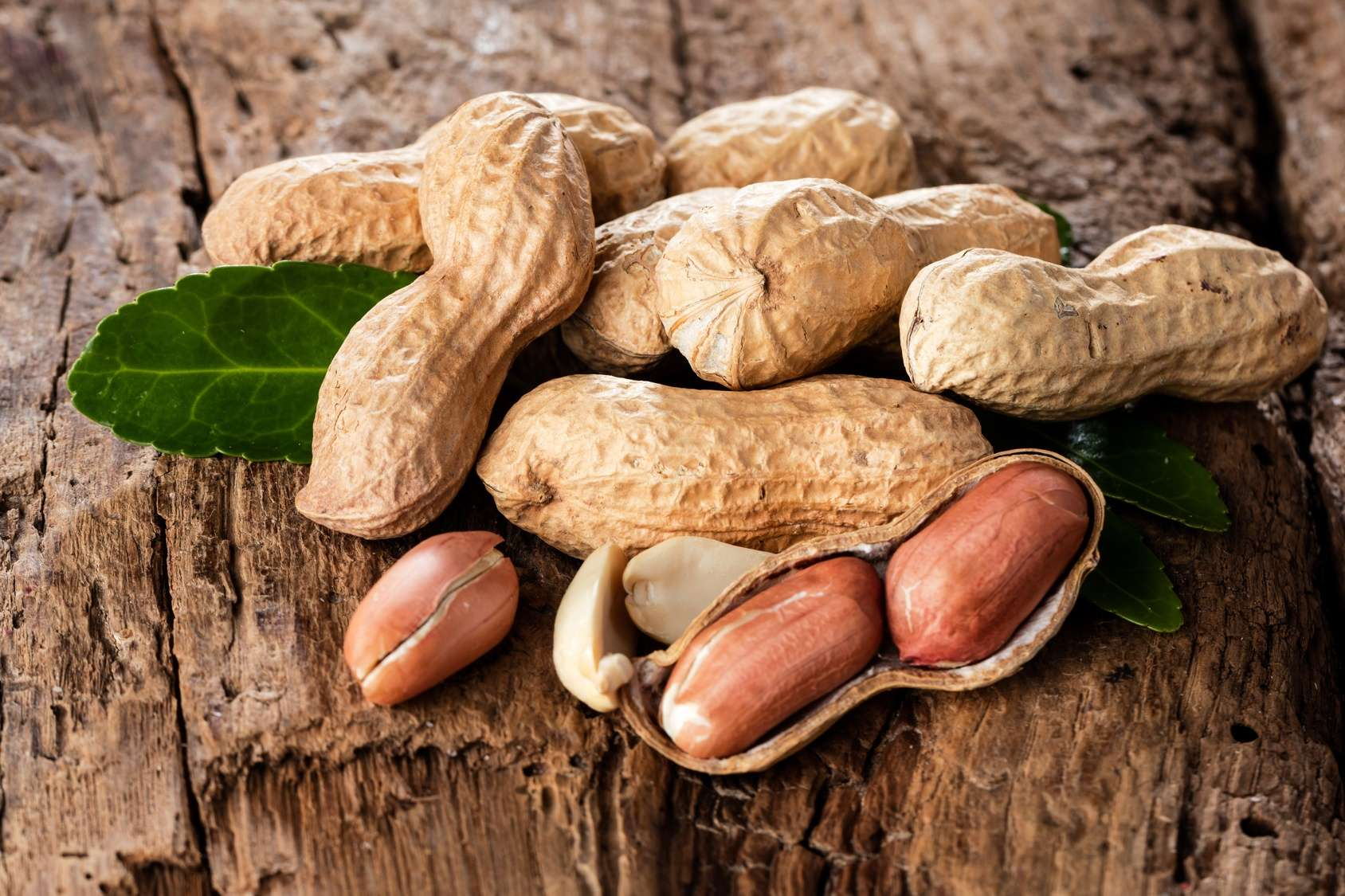 Arachides DOULEURS MENSTRUELLES