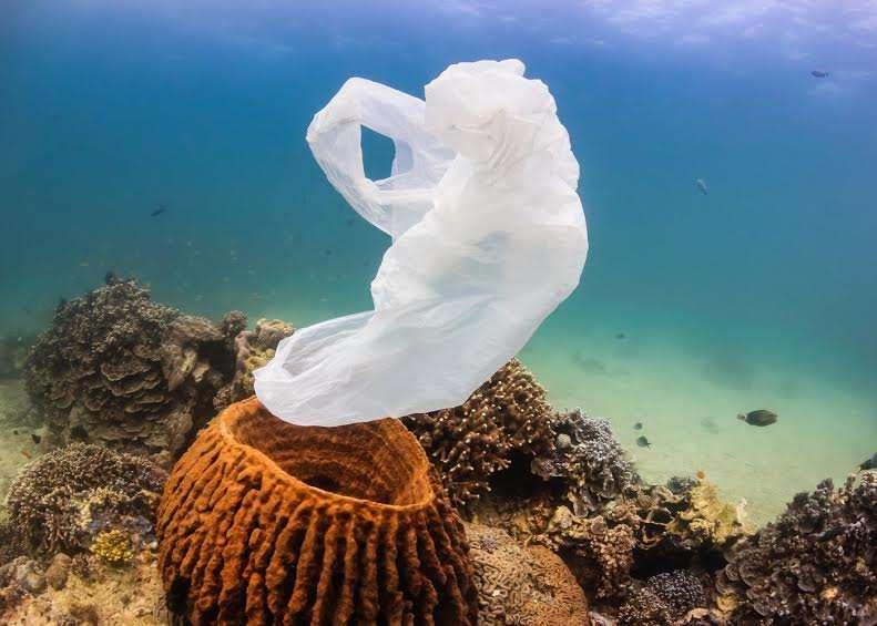 Chaque année, 8 millions de tonnes de déchets de matière plastique atteignent l'océan, où cette masse s'accumule en se fragmentant. Si des efforts sont faits pour augmenter la part du recyclage, explique le rapport publié pour le forum de Davos, ce flux se réduira mais ne s'annulera pas et la quantité de plastique dans l'océan continuera d'augmenter. La solution est un recyclage systématique. © Richard Whitcombe, Shutterstock
