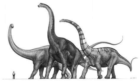 Le corps du Sauroposeidon (au centre) avait probablement une température proche de 47,7 degrés...(Crédits : www.avph.hpg.ig.com.br/)