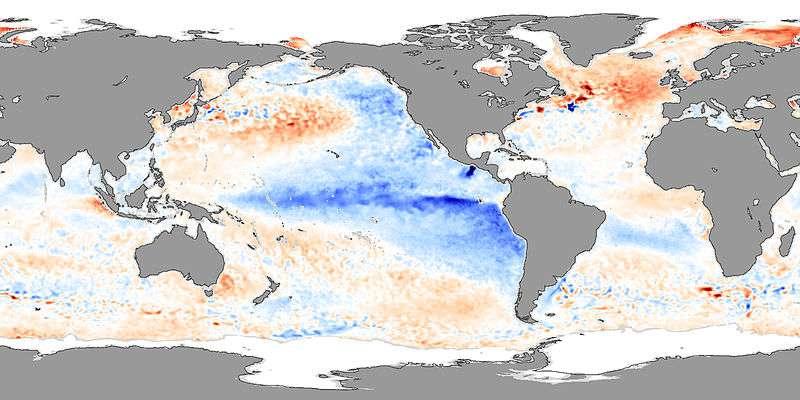 En 2007, la Niña avait provoqué des anomalies de températures. Sur la carte, les couleurs froides (bleu) représentent une anomalie négative, soit une baisse des température. On observe donc bien un refroidissement de l'eau en surface, dans l'est du Pacifique et en particulier le long des côtes américaines. © Nasa, Jesse Allen