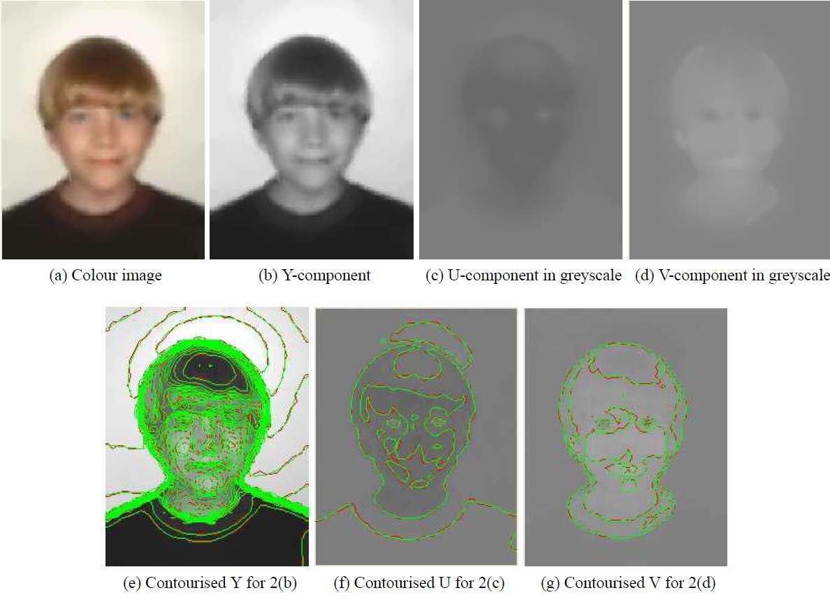 Des chercheurs de l'université de Bath ont développé un nouveau codec très sophistiqué, capable de créer et de remplir de façon précise les nuances de couleurs pour remplacer les pixels. Ainsi, en décomposant une photo en niveaux de gris, la luminance (Y) est représentée sous forme d'une multitude de vecteurs. Il en est de même pour les composantes de la chrominance (U et V). Le résultat est une forme indépendante de la définition du film ou d'une image, conservant la plus grande qualité visuelle, sans faire appel à l'imagerie matricielle. © Université de Bath