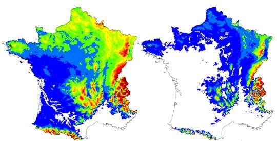 Modification de l'aire de répartition du hêtre en France entre aujourd'hui (à gauche) et 2100 (à droite) suite aux variations climatiques engendrées par le réchauffement. © Inra
