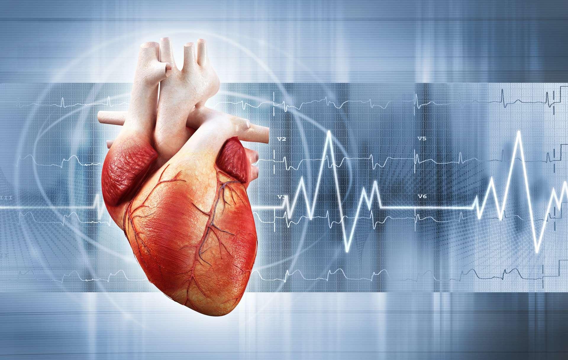 Les personnes de grande taille ont un risque accru de fibrillation auriculaire. © adimas, Adobe Stock