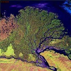 Le fleuve Lena (Russie), qui court sur près de 4400 km est le plus long au monde. Son Delta est aussi une réserve sauvage et protégée la plus vaste de Russie. C'est un sanctuaire pour de nombreuses espèces de la faune et flore sibérienne.