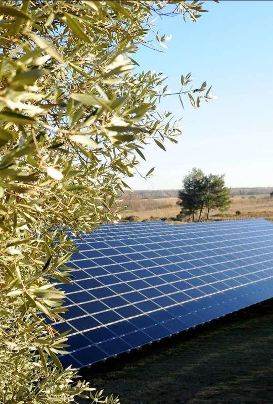 Quelques panneaux de la nouvelle centrale solaire de La Narbonnaise dans l'Aude, réalisée par EDF Energies Nouvelles. © H.Hôte-Agence Caméléon / EDF EN