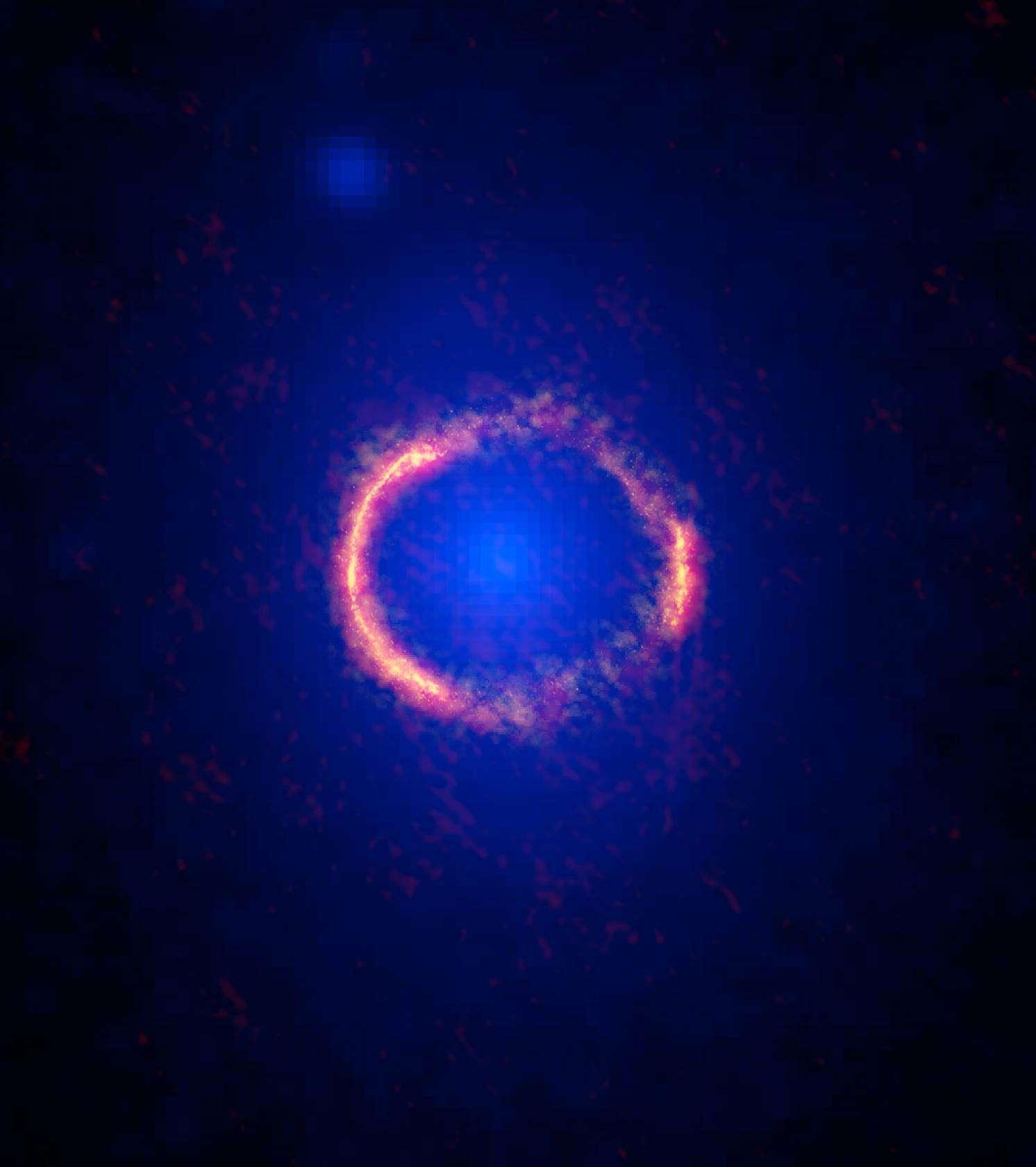 L'étonnant portrait, composite de l'objet SDP.81, situé à près de 12 milliards d'années-lumière, déformé en anneau par un effet de lentille gravitationnelle. Sur l'image acquise dans le visible par Hubble, on devine la galaxie spirale du premier plan qui a infléchi la lumière émise par celle située à l'arrière-plan. Sur les images (superposées) réalisées avec les antennes d'Alma dans les longueurs d'onde millimétriques et submillimétriques, on distingue le rayonnement des poussières qu'abrite la lointaine galaxie active. © Alma (NRAO, Eso, NAOJ), B. Saxton, AUI, NSF, Nasa, Esa, Hubble, T. Hunter