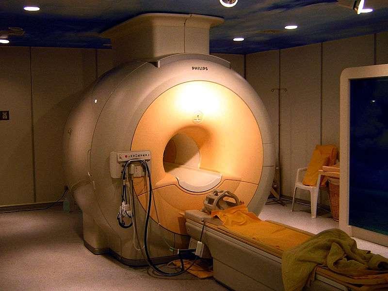 L'IRM fonctionnelle permet de visualiser indirectement l'activité du cerveau à travers les variations locales du flux sanguin. Grâce à cela, et avec un brin d'ironie, les scientifiques ont localisé le réseau de neurones impliqués dans la théorie de l'esprit. © KasugaHuang, Wikipédia, cc by sa 2.5