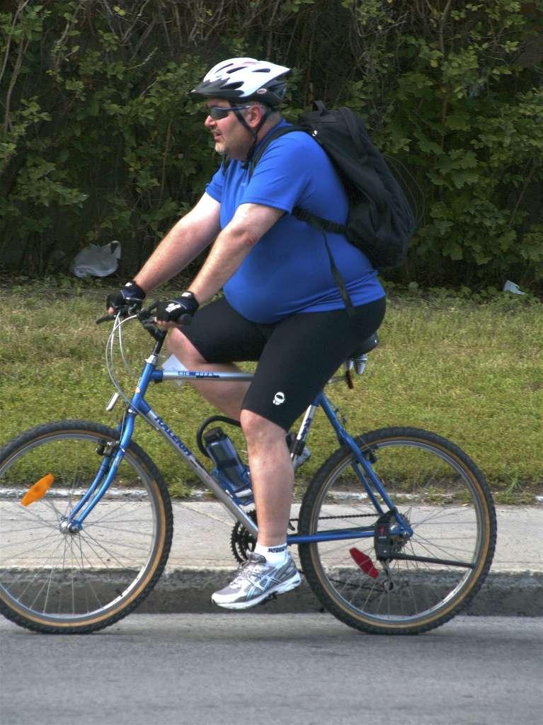 Selon l'Organisation mondiale de la santé, une alimentation équilibrée et une activité physique régulière permettraient de lutter contre l'obésité. Malheureusement, peu de personnes respectent ces recommandations. La flore intestinale joue également un rôle important dans la prise de poids. En l'étudiant, les chercheurs espèrent trouver une parade à cette pathologie. © colros, Flickr, cc by 2.0