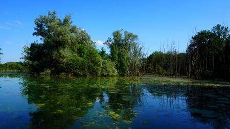 La Petite Camargue est une zone humide abritant de nombreuses espèces. © Mihaly, Flickr, CC, by-nc-sa 2.0