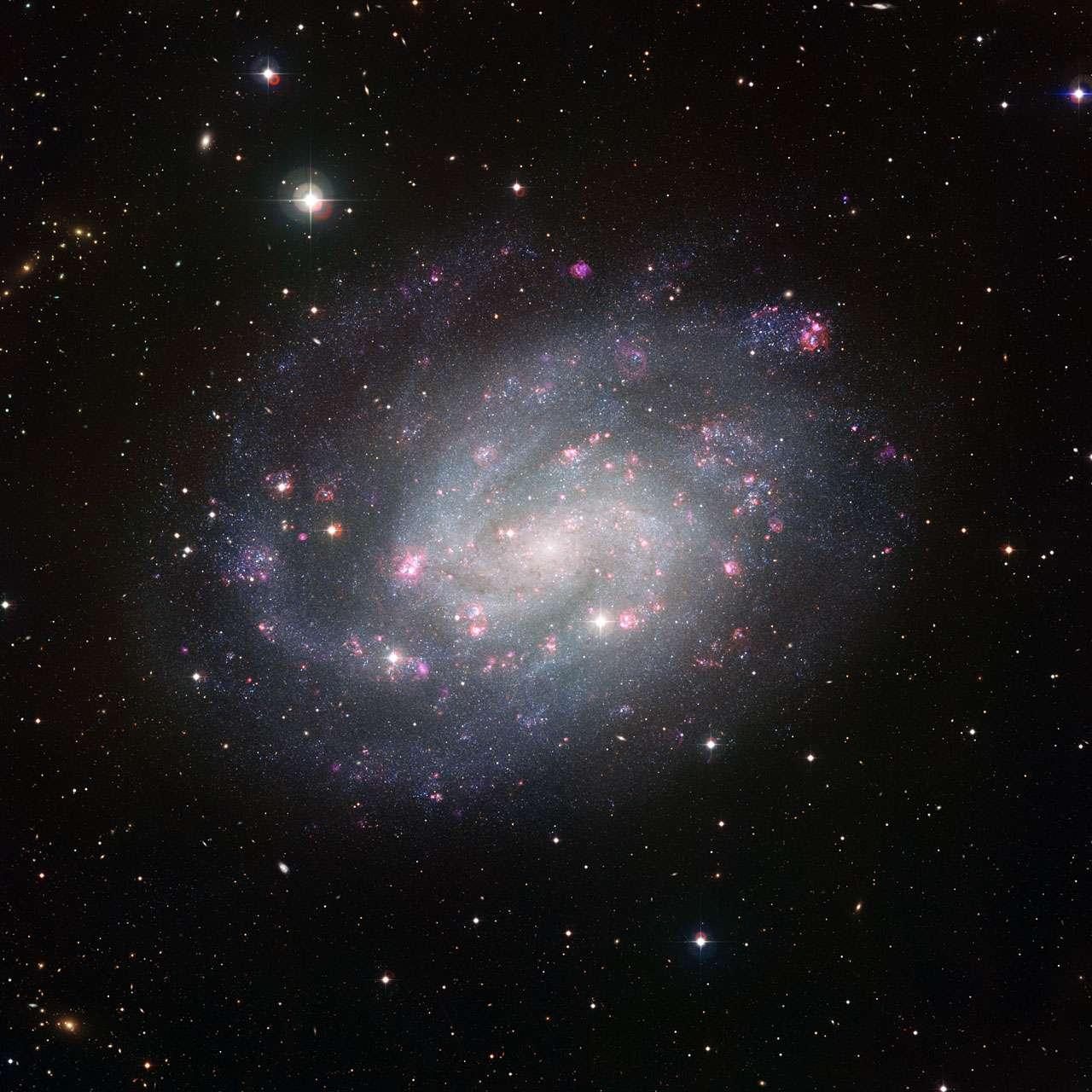 A 6 millions d'années-lumière, la galaxie NGC 300, située dans la constellation du Sculpteur, ressemble beaucoup à la nôtre. Une aubaine pour les astronomes de l'Eso qui viennent d'en réaliser cette image très détaillée. Crédit Eso