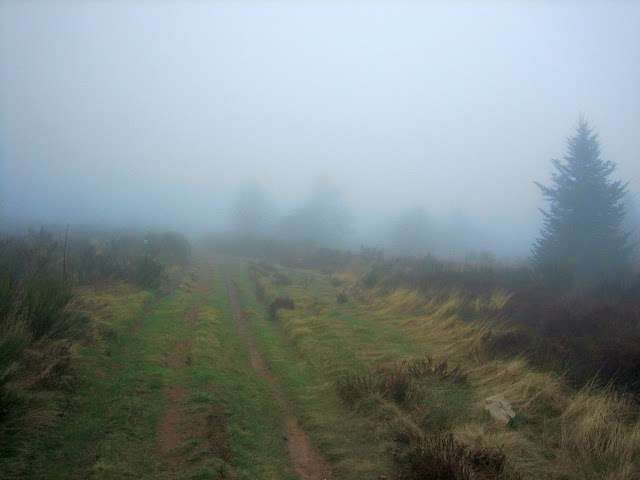 Le brouillard est une manifestation de très fins hydrométéores en suspension dans l'air. © Christian CC by-nc 3.0