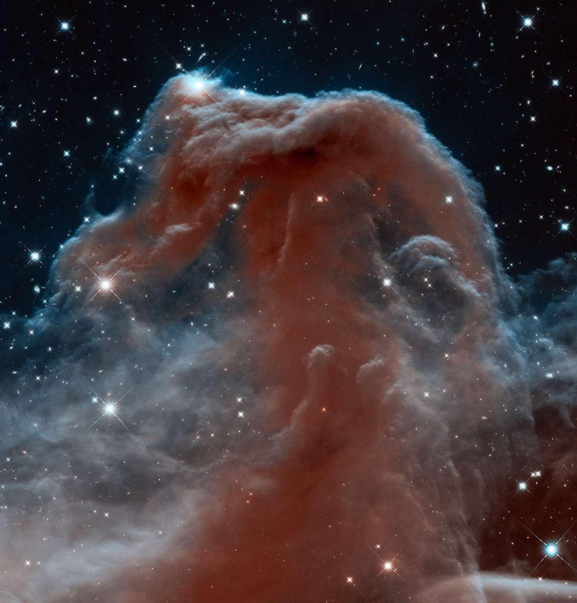 Barnard 33, la nébuleuse de la Tête de cheval, revisitée ici en infrarouge par la caméra WFC3 à l'occasion des 23 ans du télescope spatial américain Hubble. © Nasa, Esa, Hubble heritage team, STScI/Aura
