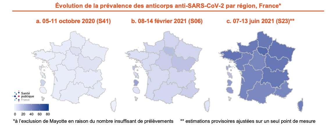 Évolution de la prévalence des anticorps anti-Sars-Cov-2 par région. © Santé Publique France, Institut Pasteur, Anses