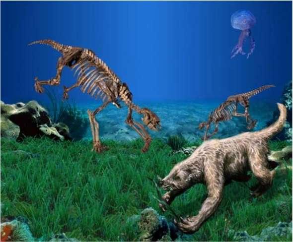 Il y a quelques millions d'années, certains paresseux étaient aquatiques et trouvaient leur nourriture dans les fonds marins peu profonds. © Philippe Loubry, William L. Parsons