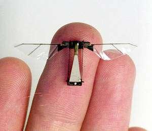 Ce petit engin volant qui ressemble à s'y méprendre à un insecte nous surveille-t-il ? © DR