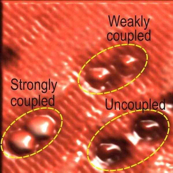 Sur cette image prise au microscope à effet tunnel, les boîtes quantiques constituées d'un seul atome de silicium sont bien visibles. On en voit qui sont couplées, comme des atomes dans une molécule, et d'autres indépendantes. Crédit : Robert A. Wolkow