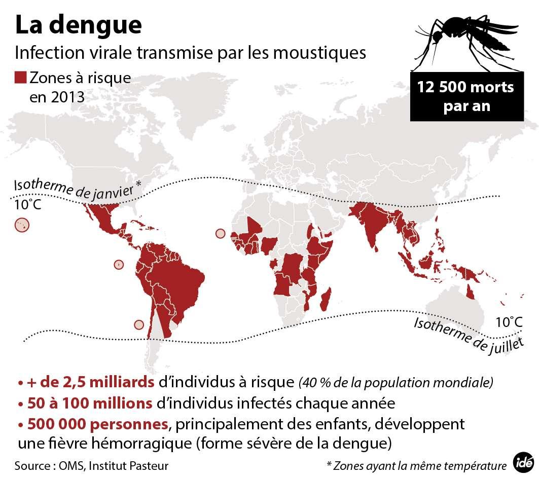 Zones dans lesquelles la dengue sévit. © Idé