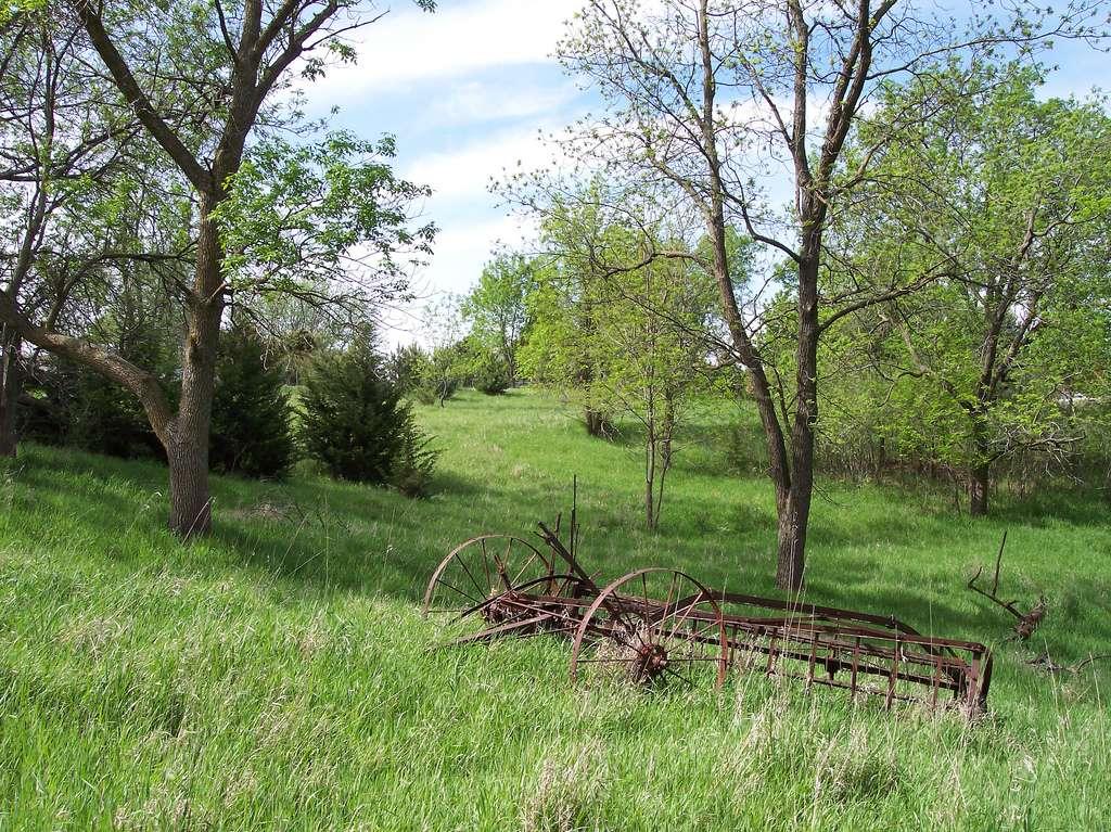 Simplicité volontaire : renouez avec la nature. © Christine Warner Hawks, Flickr, cc by 2.0