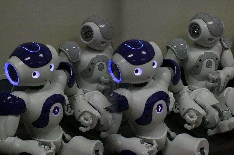 Le premier prototype de Nao a été conçu entre janvier 2005 et mars 2006. Depuis, il a été décliné en plusieurs versions. Avec l'ajout des chercheurs américains, ces derniers prouvent que le robot peut être effectif pour concentrer l'attention des enfants atteints d'autisme. © Kai Schreiber, Wikipédia, cc by sa 2.0