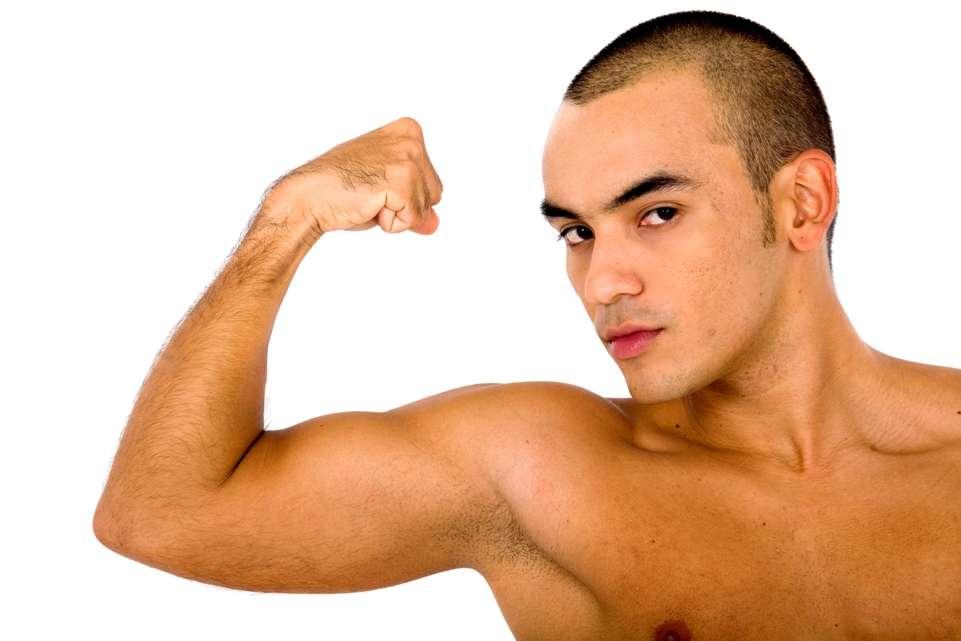 La testostérone est souvent associée à la virilité, caractéristique typiquement masculine. Cette hormone que l'on considérait comme vicieuse, favorisant l'agressivité ou les comportements dangereux, pourrait aussi s'avérer vertueuse et encourager l'honnêteté. © Andresr, StockFreeImages.com