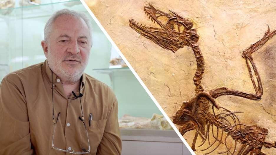 Interview : trois dinosaures exceptionnels