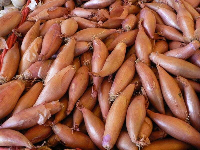 L'échalote allongée est une sorte d'échalote rose. © Wikimedia Commons