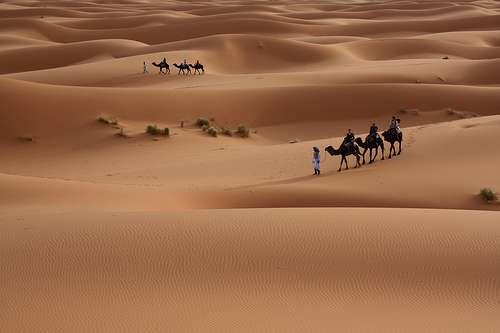 Les ergs sont nombreux au Sahara. © Alex Lichtenberger, Flickr CC by-nc-nd 2.0