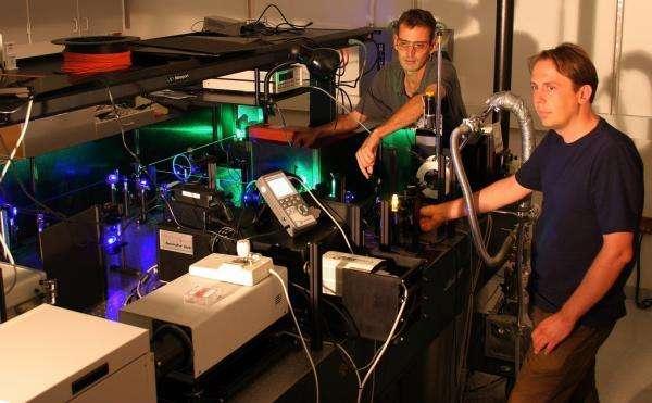 Christoph Boehme et John Lupton en train d'utiliser un laser pour bombarder un échantillon de MEH-PPV. Crédit : Nick Borys