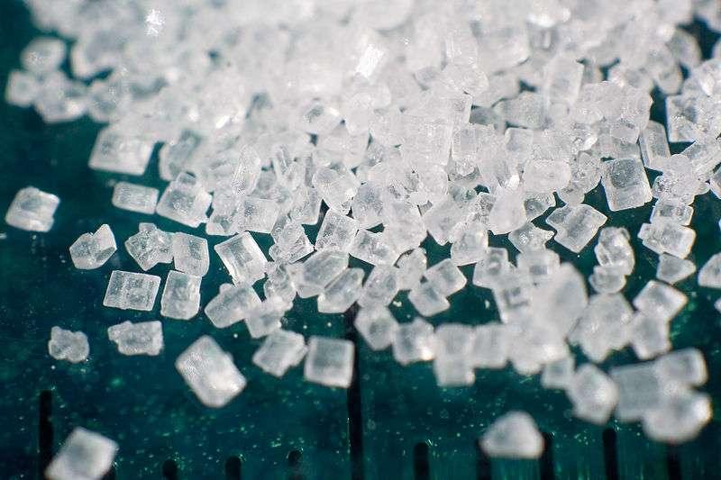 Le sucre de table (le saccharose) est un disaccharide. © Lauri Andler, Wikimedia, GFDL