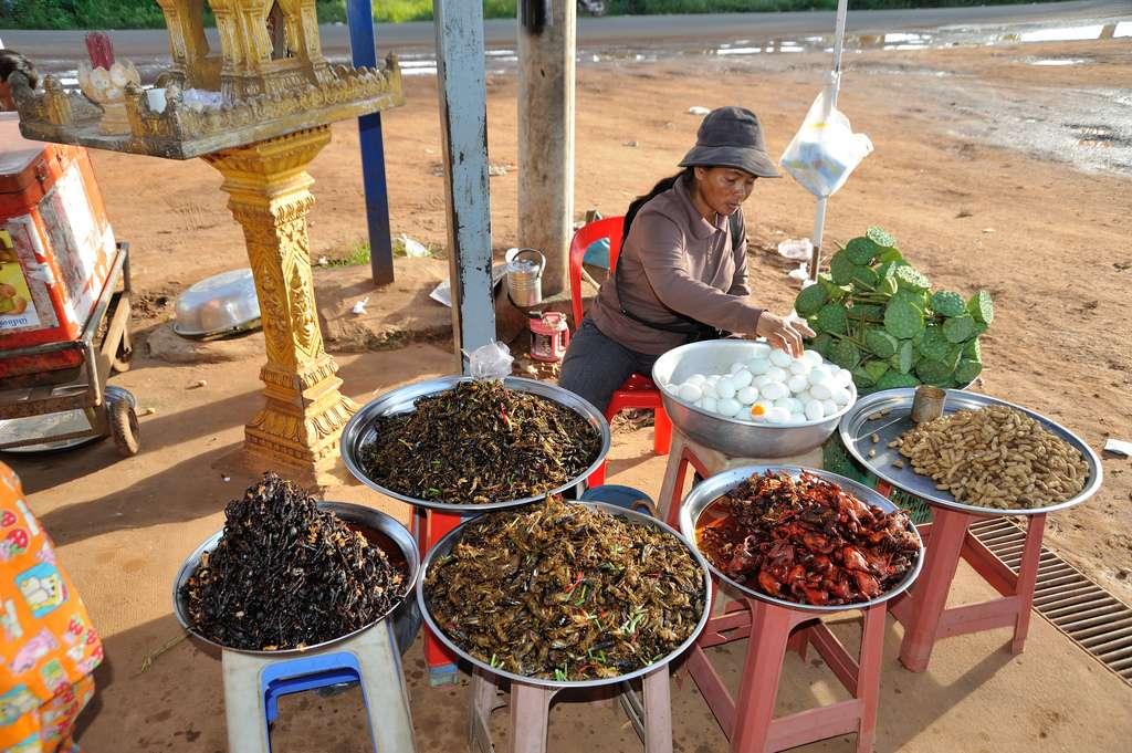 Au Cambodge, la consommation d'insectes et autres petites bêtes est courante. Chez cette commerçante, on peut faire le plein d'araignées, blattes et sauterelles. © louis.foecy.fr, Flickr, cc by 2.0