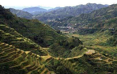 Héritage agricole: legs du passé, passeport pour le futur