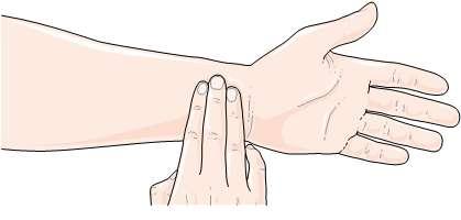 Mesurer son rythme cardiaque : un geste simple pour vérifier sa forme. L'index est à deux centimètres du poignet et appuie entre les tendons. Comptez pendant 30 secondes et multipliez par deux. © Etude Beautiful