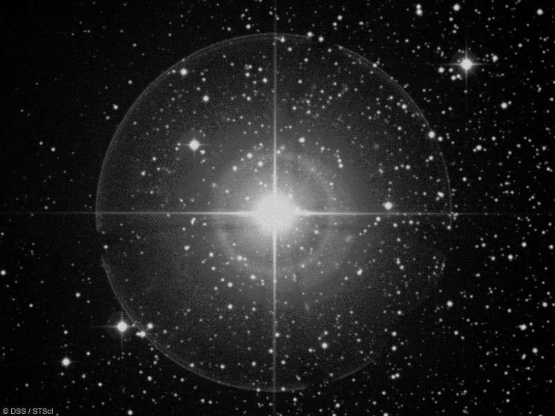 En attendant sa prochaine explosion en supernova, l'étoile Epsilon du Cocher continue d'intriguer les chercheurs avec ses étranges éclipses. Crédit DSS/STScl