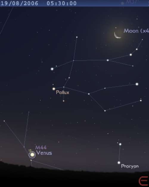 La planète Vénus est en conjonction avec l'amas de la Crèche (M44)