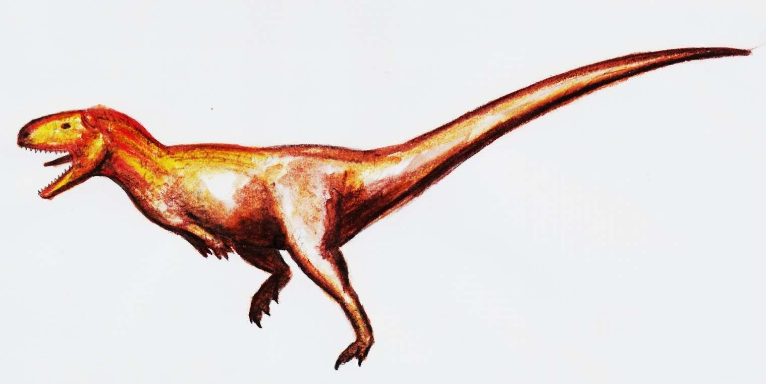 Des restes d'un dinosaure proche de l'abélisaure, ici représenté, ont été retrouvés au nord-oeust de l'Arabie Saoudite, en compagnie de vertèbres d'un titanosaure, géant de 20 m de long. © Theropod1, deviantart.com, cc by nc nd 3.0
