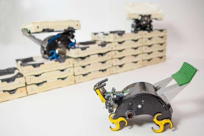Les minirobots Termes conçus par une équipe de l'université Harvard sont équipés de capteurs infrarouge qui leur servent à se repérer et à détecter les autres robots. Ils sont capables de construire des structures à partir de blocs en mousse de façon autonome grâce à un algorithme qui fixe seulement des règles de circulation et de comportement. © Eliza Grinnell, SEAS Communications